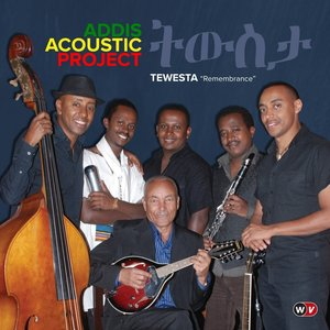 Image for 'Addis Acoustic Project'