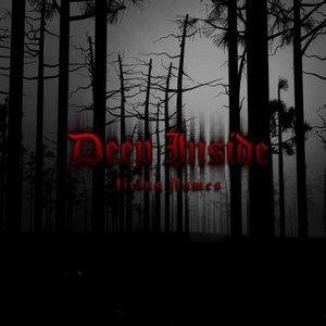 Bild för 'Deep Inside'