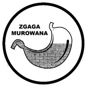 Image for 'Zgaga Murowana'