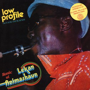 Image for 'Lekan Animashaun'