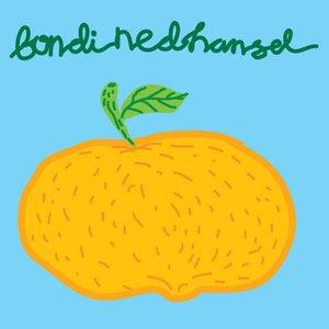 Image for 'BONDI NED HANSEL'