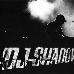 Bild för 'DJ Shadow'