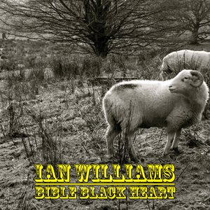 Image for 'Ian Williams & The Beale St Whalers'