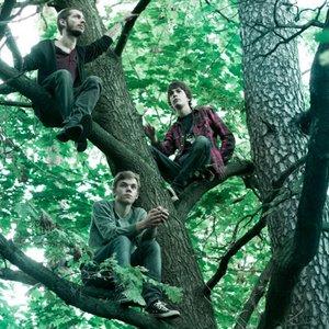 Bild för 'Pyro Trees'