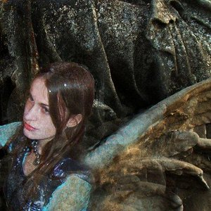 Image for 'The Silver Wizard Project'