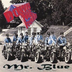 Immagine per 'Mr. Blue'