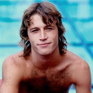 """Andy Gibb""的封面"