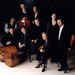 Imagen de 'Il Seminario Musicale'
