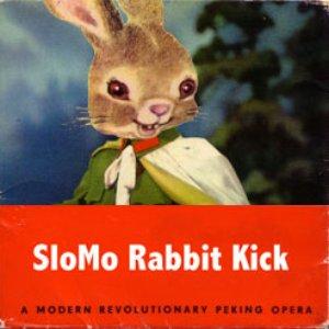 Image for 'Slomo Rabbit Kick'