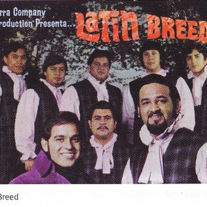 Image for 'Latin Breed'