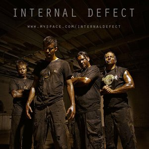 Image for 'internal defect'