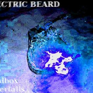 Bild för 'Electric Beard'