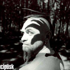 Bild för 'Krucipüsk'