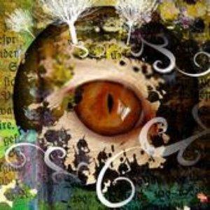 Image for 'DJ.HAKU'