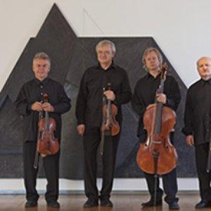 Image for 'Stamic Quartet'