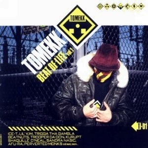 Image for 'DJ Tomekk feat. Ice-T, Sandra Nasic & Trigga Tha Gambla'