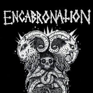 Bild för 'encabronation'