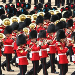Image pour 'The Massed Bands of The Household Division'
