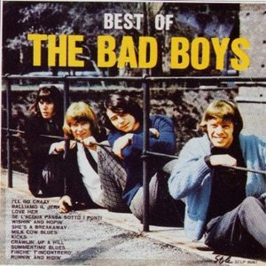 Image for 'The Bad Boys'
