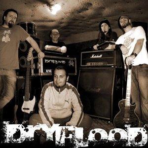 Bild för 'DryFlood'