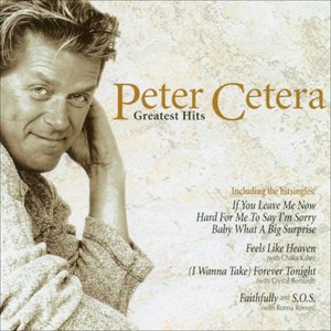 Image for 'Peter Cetera & Chaka Khan'