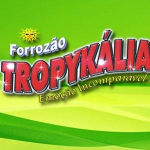 Image for 'Forrozão Tropykália'