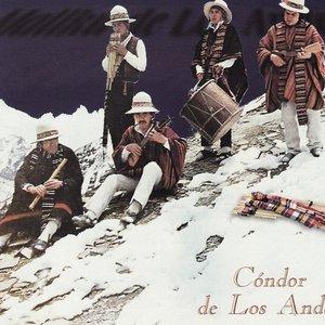 Bild für 'Mallku de Los Andes'