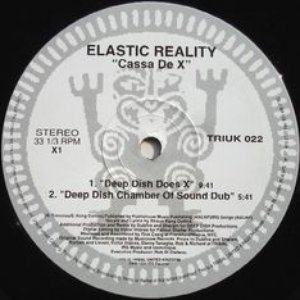 Image for 'Elastic Reality'
