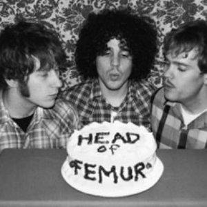 Immagine per 'Head of Femur'