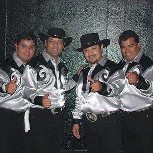 Image for 'Los Palominos'