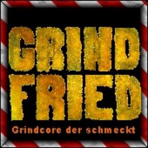 Image for 'Grind Fried'