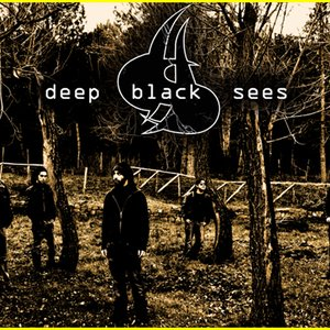 Image for 'Deep Black Sees'