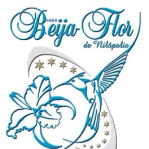 Image for 'Beija-Flor de Nilópolis'