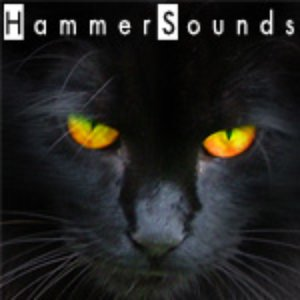 Image for 'HammerSounds'