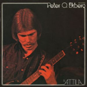 Image for 'Peter O Ekbergs System'