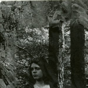 Image for 'Turdus Merula'