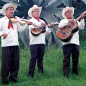 Bild för 'Trio Xoxocapa'