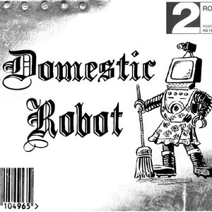 Image for 'Domestic Robot'