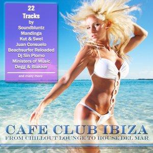 Image pour 'Ibiza Clubbers'