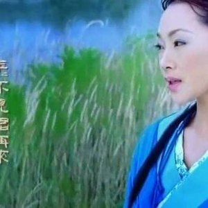Image for 'Beautiful Chinese Music'
