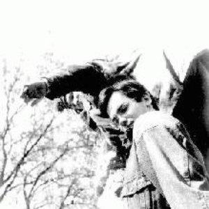 Image for 'Radiatoru Remonts'