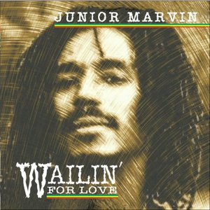 Image for 'Junior Marvin'
