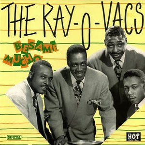 Image for 'The Ray-O-Vacs'