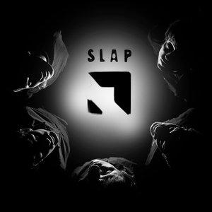Image for 'SLAP'
