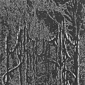 Image for 'Afkald'