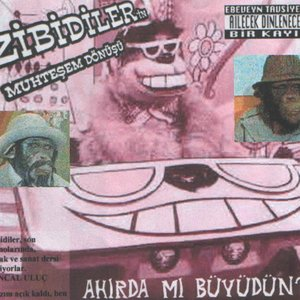 Image for 'Zibidiler'