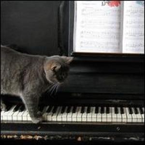 Image for 'Jazz Moody Piano'
