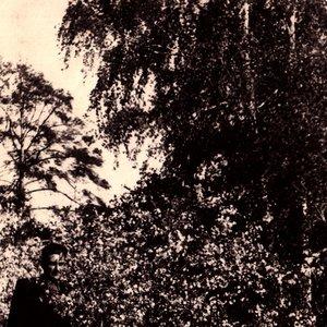 Image for 'Teenage Tasteless'