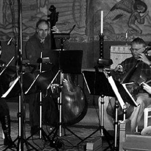 Image for 'Uppsala Chamber Soloists'