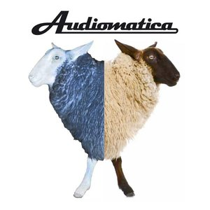 Image for 'AUDIOMATICA'